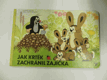 Jak krtek zachránil zajíčka