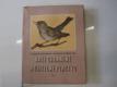 Naše chráněné a užitečné ptactvo